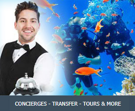 Concierges - TransFer - Tours & More